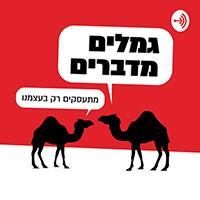גמלים מדברים